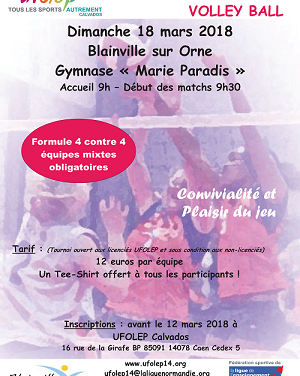 Tournoi Départemental Volley 18 mars 2018