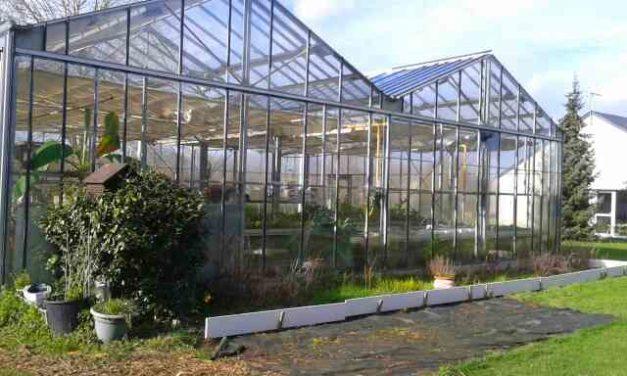 Foire aux plantes – 30 mars 2019